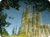reflejo de la Sagrada Familia